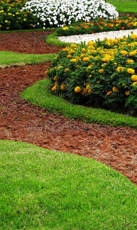 Well Grounded Landscape Design Build LLC Landscape Architecture
