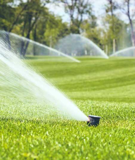 Well Grounded Landscape Design Build LLC Sprinkler Installation