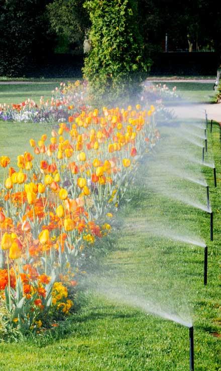 Well Grounded Landscape Design Build LLC Sprinkler Blowout