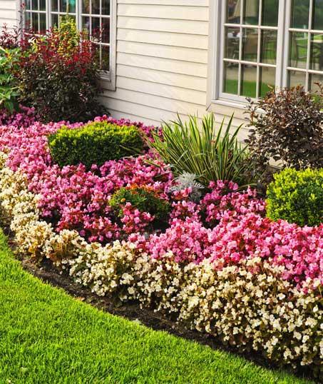 Well Grounded Landscape Design Build LLC Garden Design