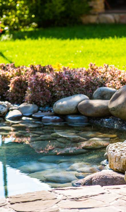 Well Grounded Landscape Design Build LLC Residential Water Features